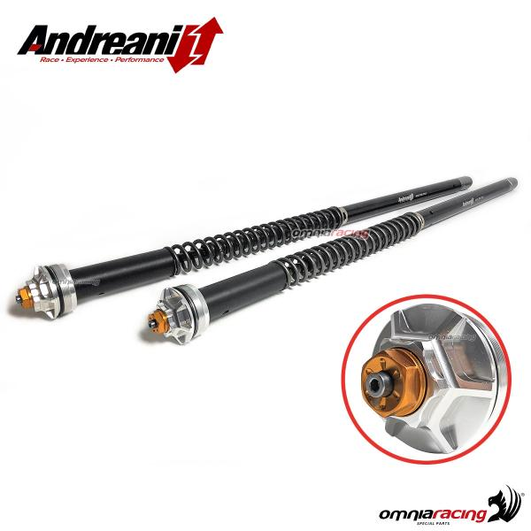 Andreani Misano Evo adjustable hydraulic cartridge for BMW F900XR 2020>