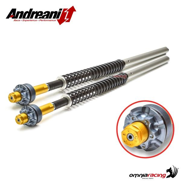 Andreani Misano adjustable hydraulic cartridge for Benelli Trek 2006>2011