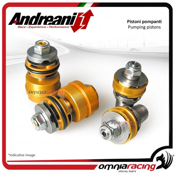 Andreani pistons pumping kit for compression and rebound Honda CB1000R 2008>2017