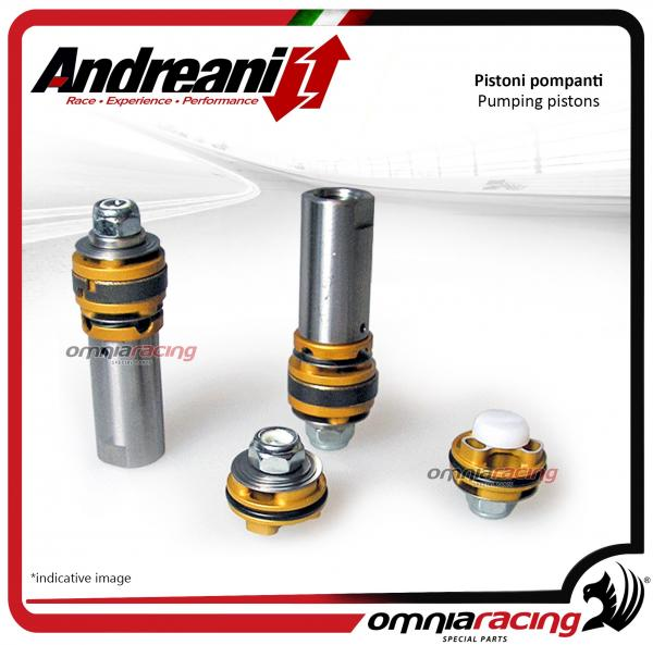 Andreani pistons pumping kit for compression and rebound Kawasaki Z750 2007>2011