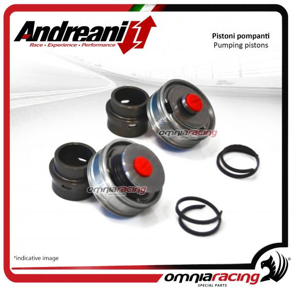 Andreani pistons pumping kit for compression and rebound Sachs for BMW S1000RR 2012>2014