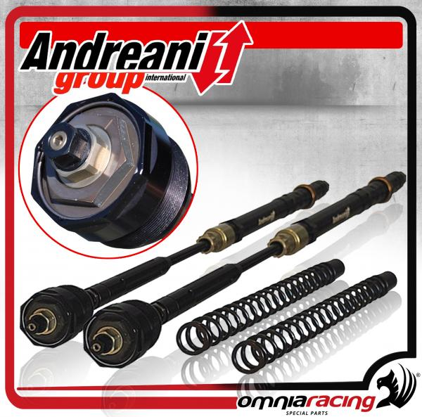 Andreani Factory Closed Pressurised Cartridge Kit for Fork Suzuki GSX-R  1000 K9 2009>2010