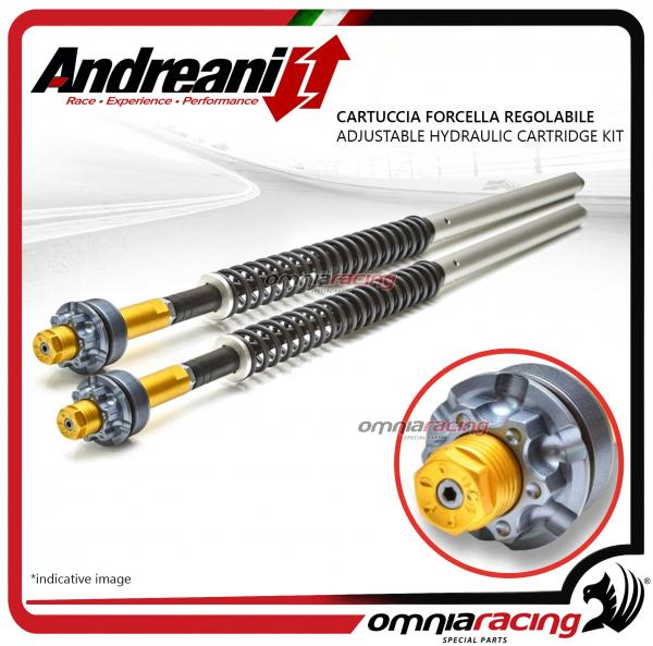 Andreani Adjustabale Hydraulic Cartridge Kit for Fork Harley Davidson  Sportster XL 883 Iron 2010>